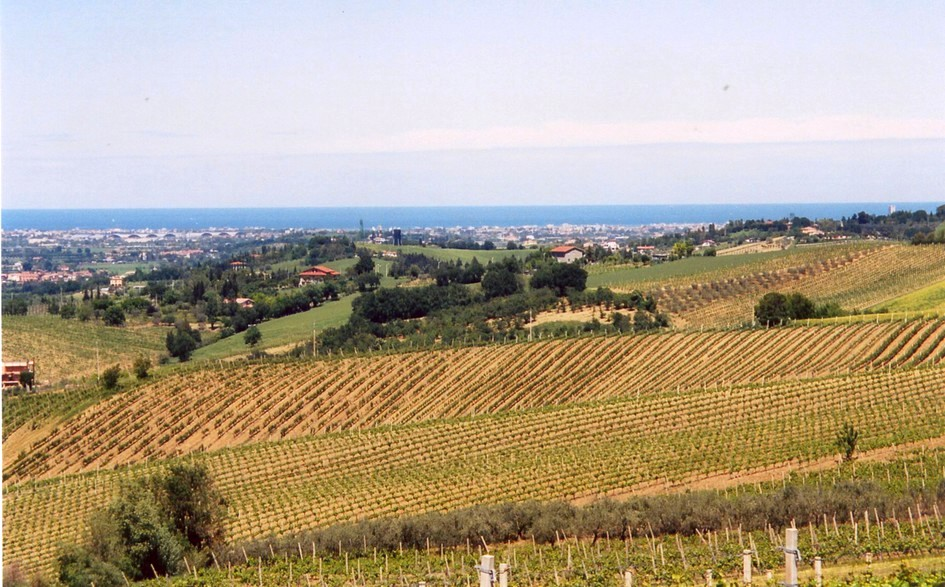 a pochi chilometri dalle spiagge di Rimini e Riccione..