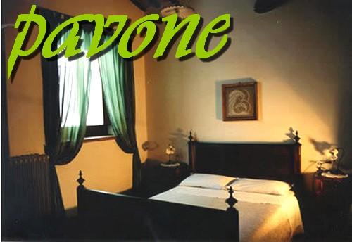 la camera PAVONE